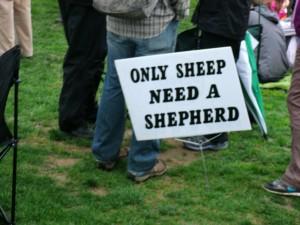Reason Rally 2012 - Sheep